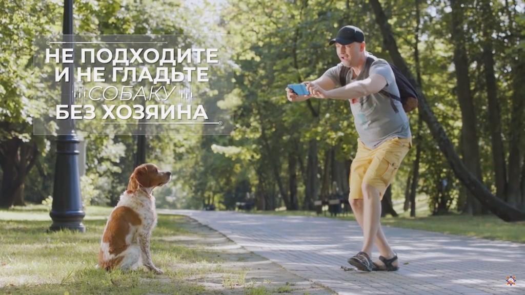Энциклопедия безопасности. Агрессивная собака