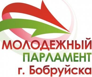 19 октября – Единый день выборов в Молодежный парламент г.Бобруйска третьего созыва